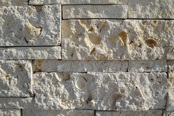 Texas Shell Ledgestone